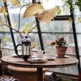 bamboo-lamp-bamboo-coffee-shop
